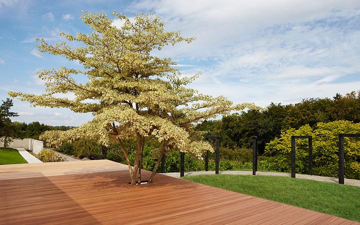 Martin Abplanalp | Gartenarchitektur Und Farbgestaltung | Projekte